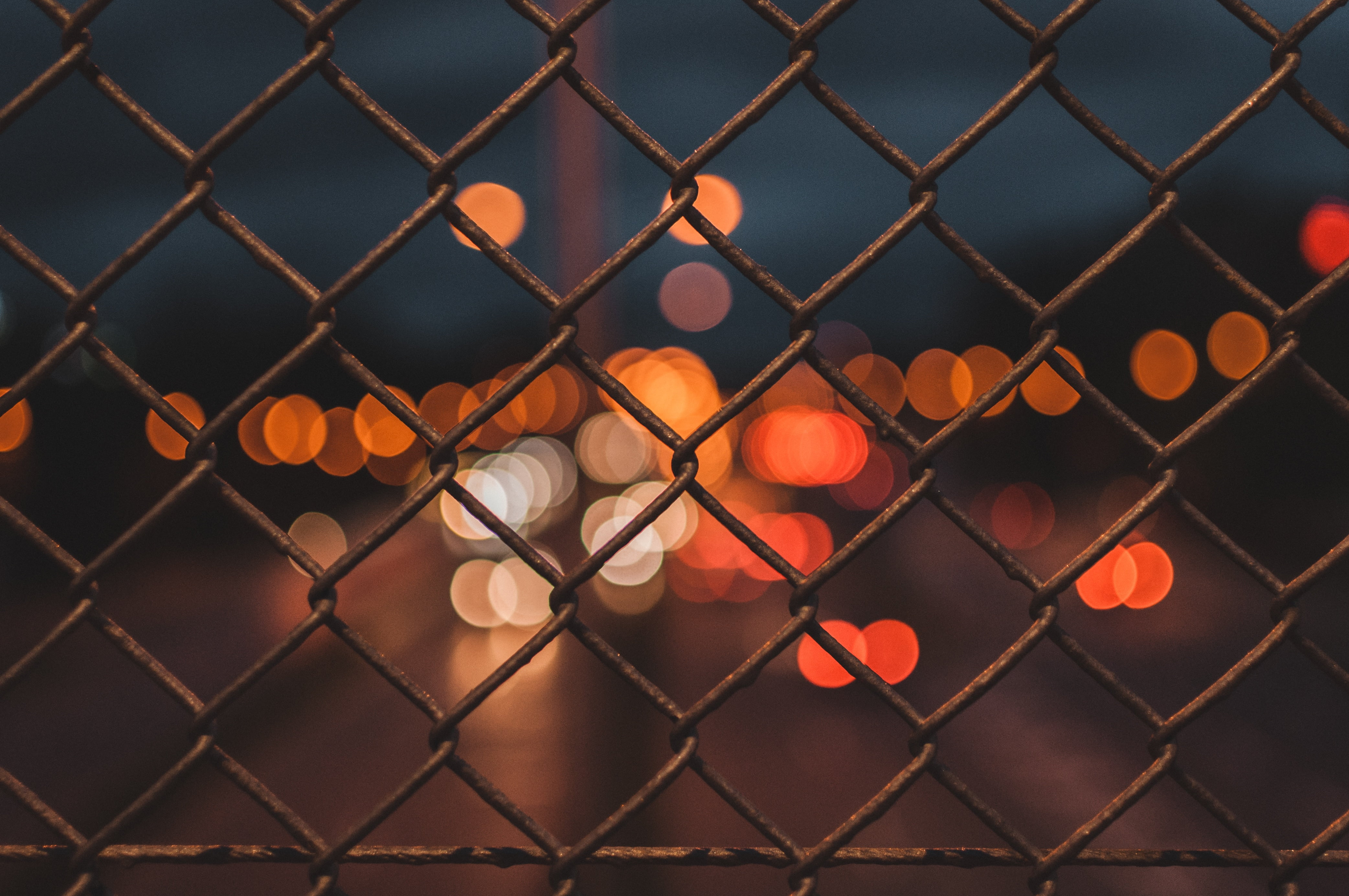 不死鸟自由上网、每日壁纸、每日一图、每日图片、动漫图片、高清壁纸、美女图片、高清大图、手机壁纸、电脑壁纸、桌面壁纸、封面图片、欧美图片、小清新图片、好看的图片、风景图片等由不死鸟分享推荐,图片均为无版权图片可以自由引用并用于商业